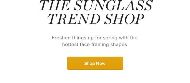 The Sunglass Trend Shop