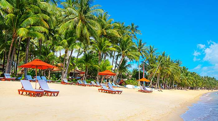 Search Hotels in Koh Samui