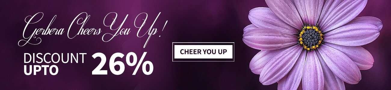 Gerberas Cheer You Up!