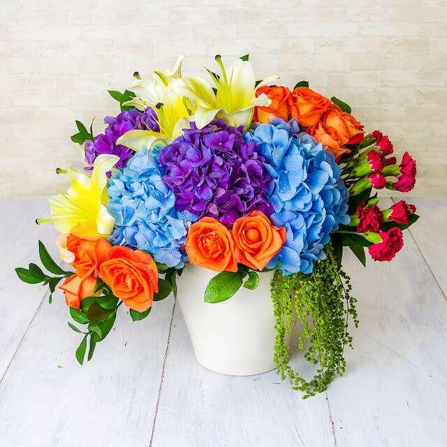 Florainbow