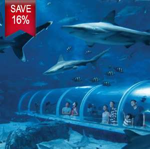 Mastercard® Exclusive: S.E.A. Aquarium with The Maritime Experiential Museum Adult One-Day Tickets (Save 16%)