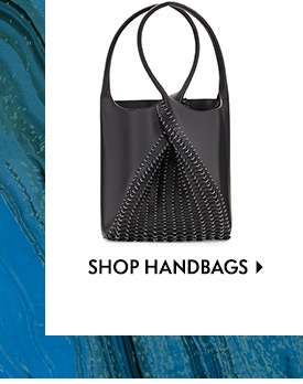 Shop Handbags/Blank Pixel