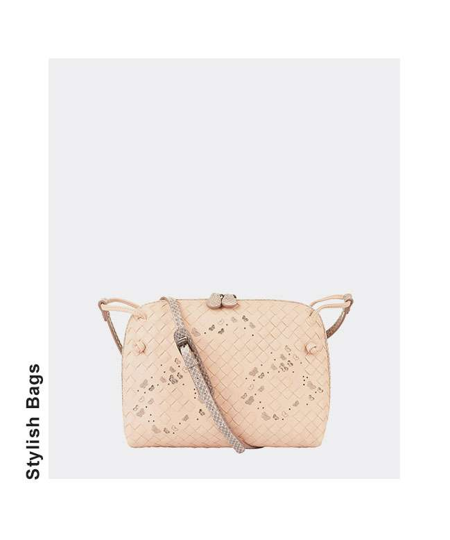 Stylish Bags