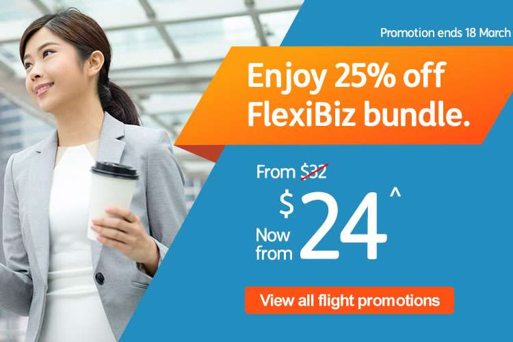 25% off FlexiBiz Bundle