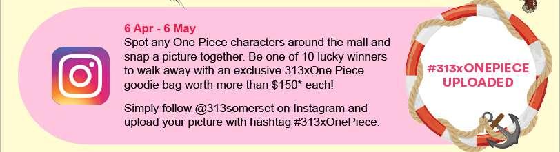 #313xOnePiece Uploaded