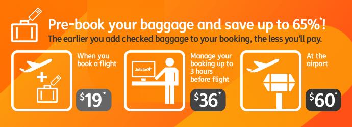 Baggage Fees