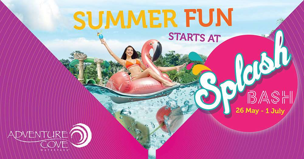 Summer Fun starts at Splash Bash (Adventure Cove Waterpark)