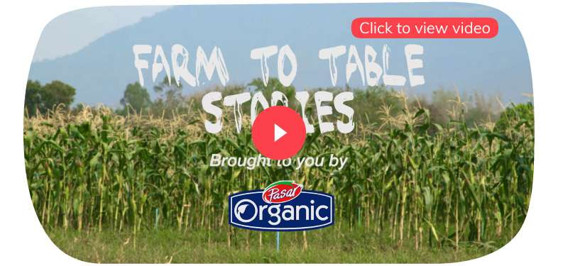 Farm to table stories