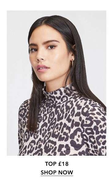 Leopard Print Funnel Neck Top