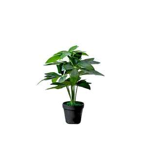 Potted+Faux+Pachira+Money+Tree.png?w=300&fm=jpg&q=80?fm=jpg&q=85&w=300