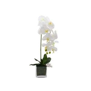 Faux_Orchid_Pot_Set.png?fm=jpg&q=85&w=300