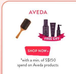 Shop Now: Aveda - Wooden Paddle Brush