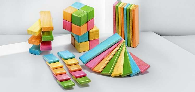 Tegu & More Memorable Toys