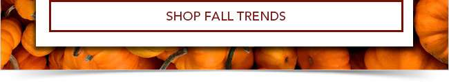 Shop Fall Trends Specials Collection