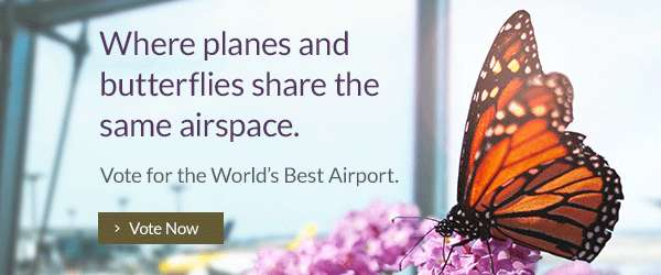 Where Planes and Butterflies Share The Same Airspace. Vote Now.