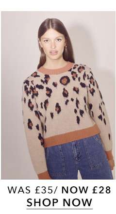 Brown Animal Print Knitted Jumper