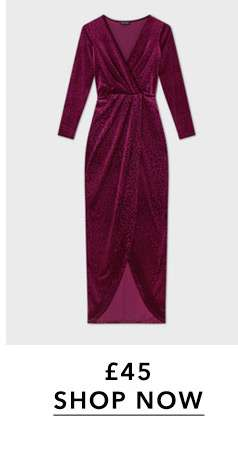 Burgundy Devore Animal Maxi Dress