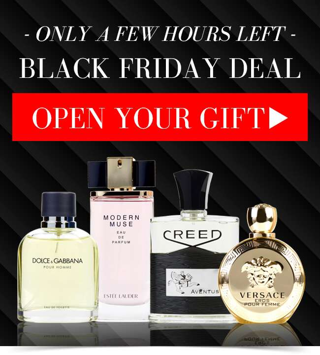 Only a few hours left! Black Friday Deal. Open your gift