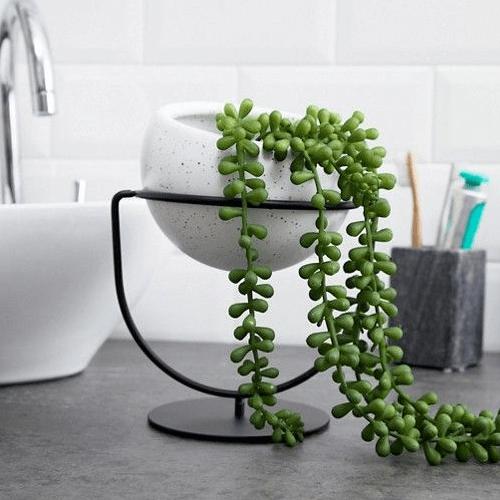 nesta-wall-desk-planter.png?fm=jpg&q=85&w=300