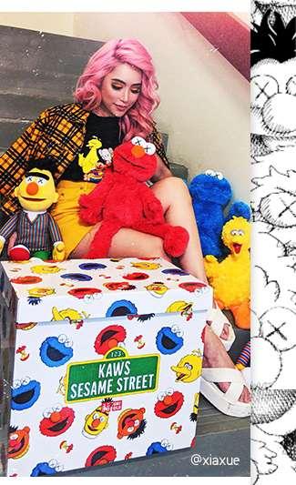 @xiaxue with her KAWS x Sesame Street Plush Toys
