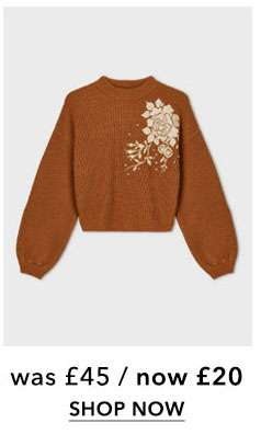 PETITE Rust Pearl Embroidered Jumper