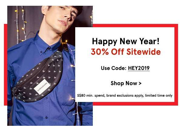 Happy New Year! 30% Off Sitewide with code HEY2019