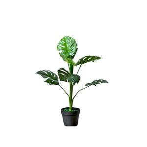 Potted+Faux+Monstera+Tree-Small.png?fm=jpg&q=85&w=300