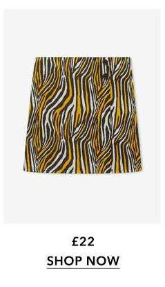 Multi Coloured Zebra Print Mini Skirt