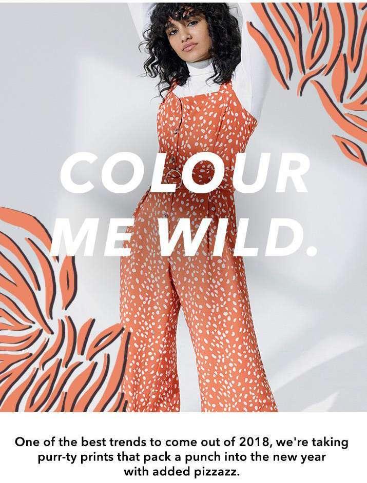 Colour me wild. - Shop animal print