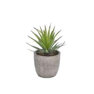 Faux_Aloe_Plant_19cm.png?fm=jpg&q=85&w=300