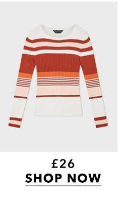 Rust Multi Striped Ribbed Knitted Top