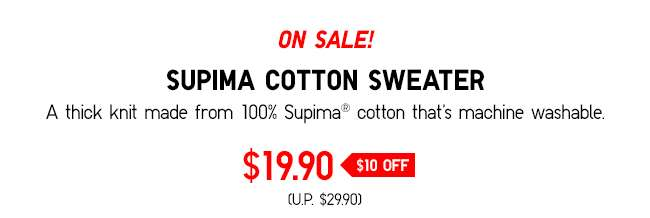SALE: Men's Supima Cotton V Neck Sweater at $19.90