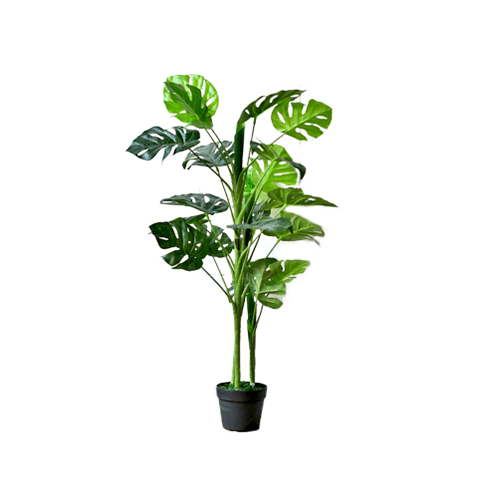 Potted+Faux+Monstera+Tree-Large.png?fm=jpgq=85w=300