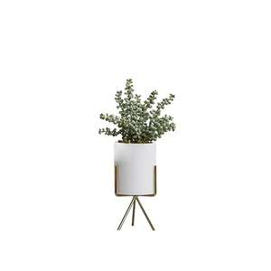Botanicals-by-HipVan--Faux-Senecio-with-Planter-on-Stand--White-Brass-Legs-2.png?fm=jpg&q=85&w=300