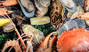Escape Restaurant & Lounge - Exclusive: 1-for-1 She11 We Seafood Spread @SGD88++