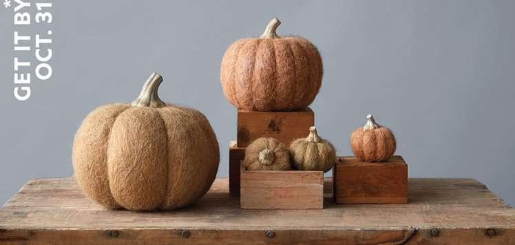 Halloween Home Essentials